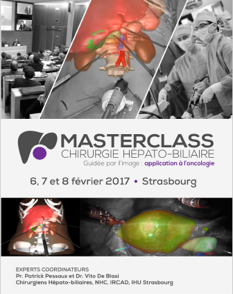 "Masterclass ""Image-Guided Hepatobiliary Surgery"""