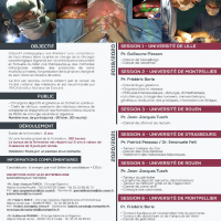 INTER UNIVERSITY DIPLOMA FOR DIGESTIVE CANCER SURGERY 2019-2020, download curriculum program