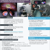 INTER UNIVERSITY DIPLOMA FOR HEPATOBILIARY SURGERY TRANSPLANTATION 2019-2020, download curriculum program