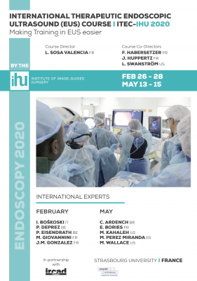 INTERNATIONAL THERAPEUTIC ENDOSCOPIC ULTRASOUND (EUS) COURSE - ITEC-IHU 2020